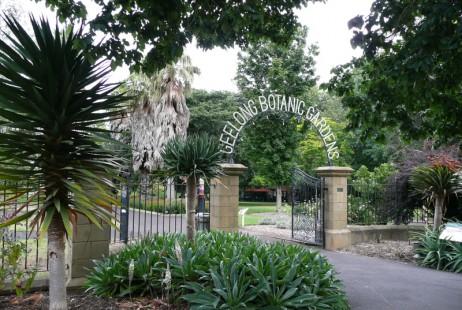 Melbourne Celebrant | Meriki Comito | Geelong Botanic Gardens Weddings