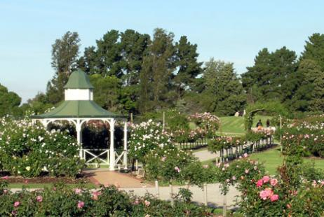 State Rose Garden Weddings Werribee