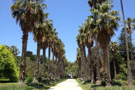 Williamstown Botanical Gardens Weddings